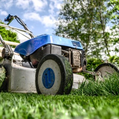 When Do You Need to Call in the Lawn Care Professionals?